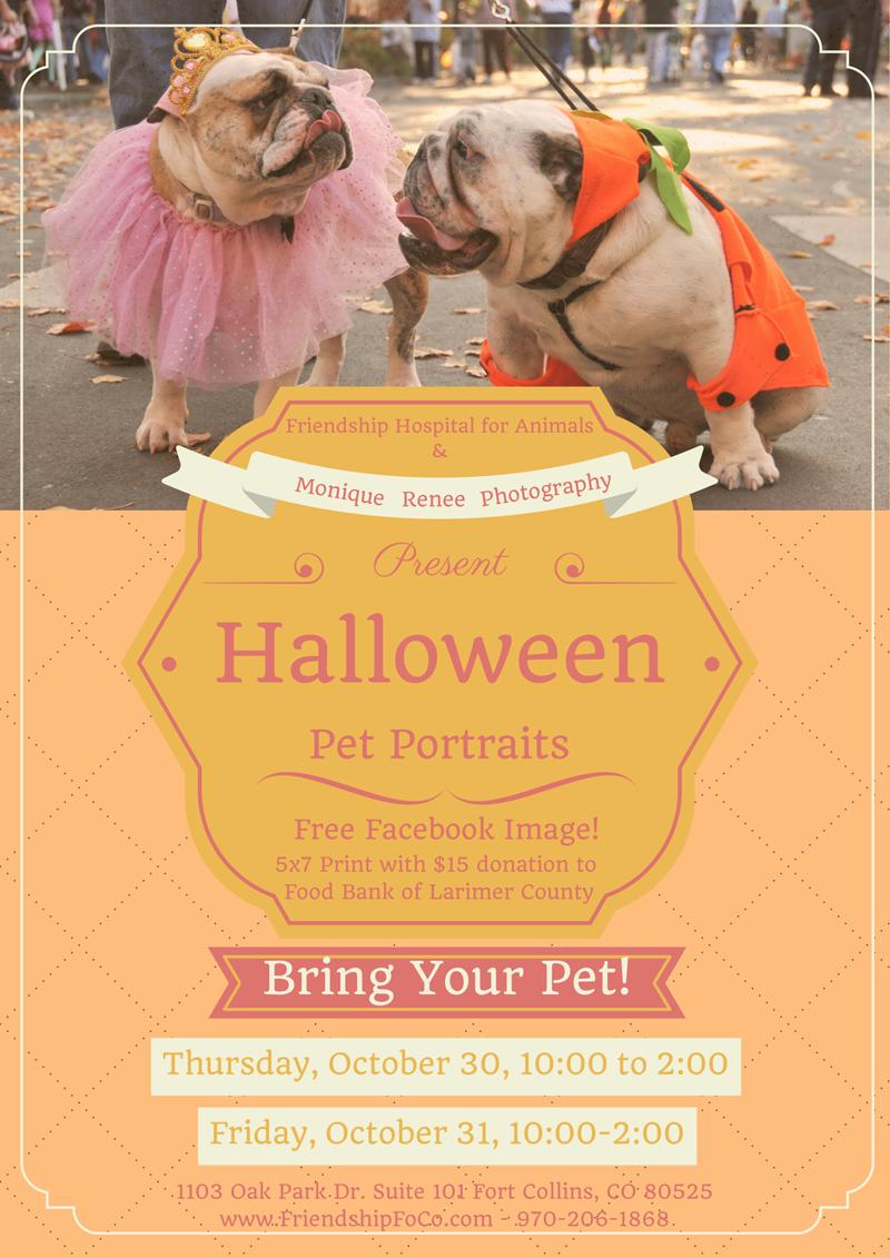 Halloween Pet Portraits Poster