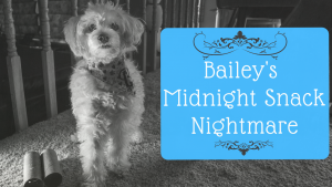 baileys midnight snack nightmare yt thumbnail