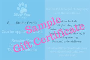 Silver Paw Studio Gift Certificate