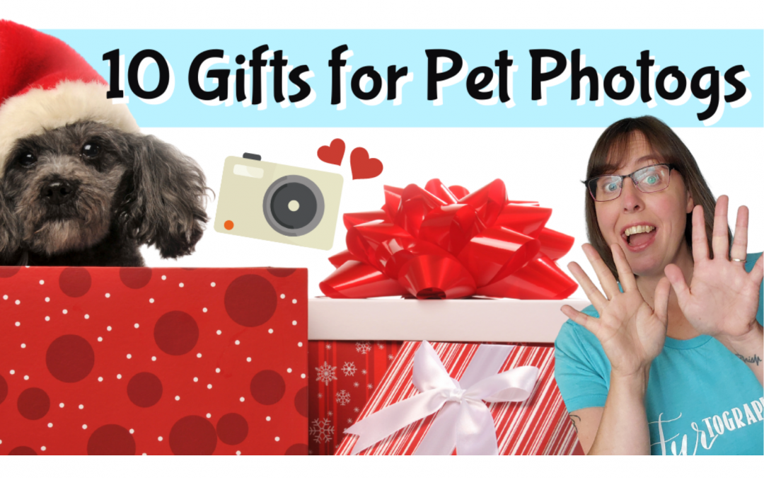 10 Must Have Gifts for Pet Photographers