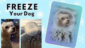 frozen soap bubbles YouTube tutorial thumbnail