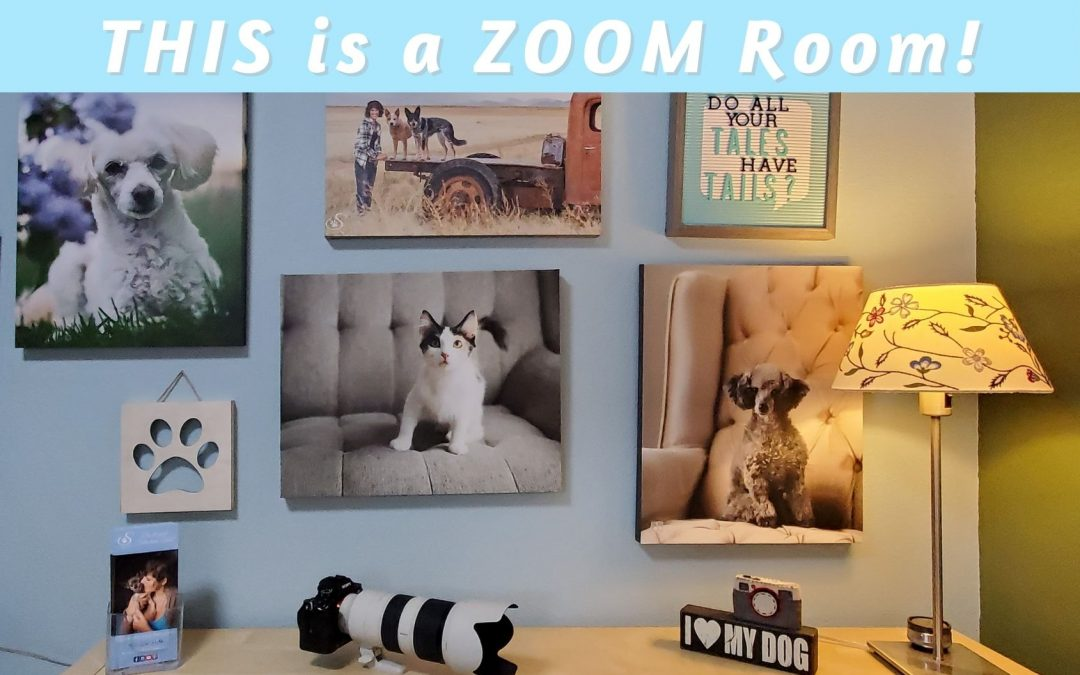 canvas prints on office wall as a zoom background