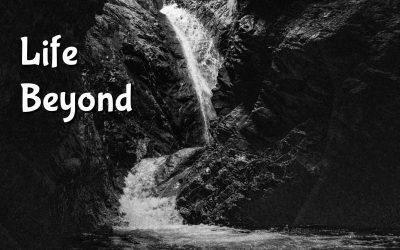 Life Beyond the Waterfall